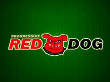 Игра на реальные деньги Red Dog Progressive