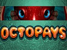 Играть онлайн в Octopays