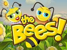 Играйте в Пчелы в Вулкане Платинум